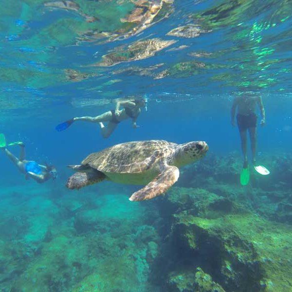 Lycia Diving or snorkelling-Lycia